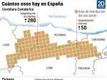 Núcleos poblacionales del oso pardo en España.