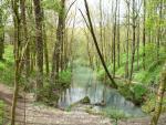 Nacimiento del Ebro
